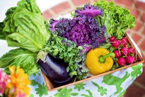Ősszel sem kell lemondanunk a friss fűszerekről és a gyógynövényekről
