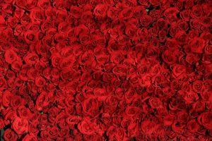 Megható nőnapi ajándék, ajándékdoboz rózsával