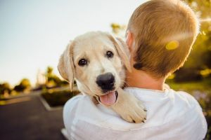 Az állattartás hatása a gyerekekre