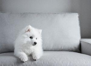 Drága és szép